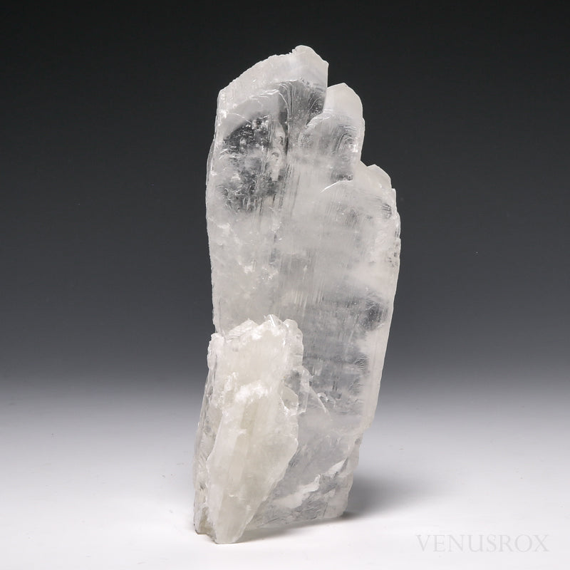 Selenite Natural Crystal From Mexico | Venusrox
