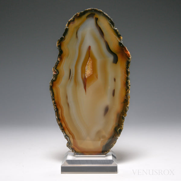 Agate with Quartz Druzy Polished Slice from Brazil, mounted on a bespoke stand | Venusrox
