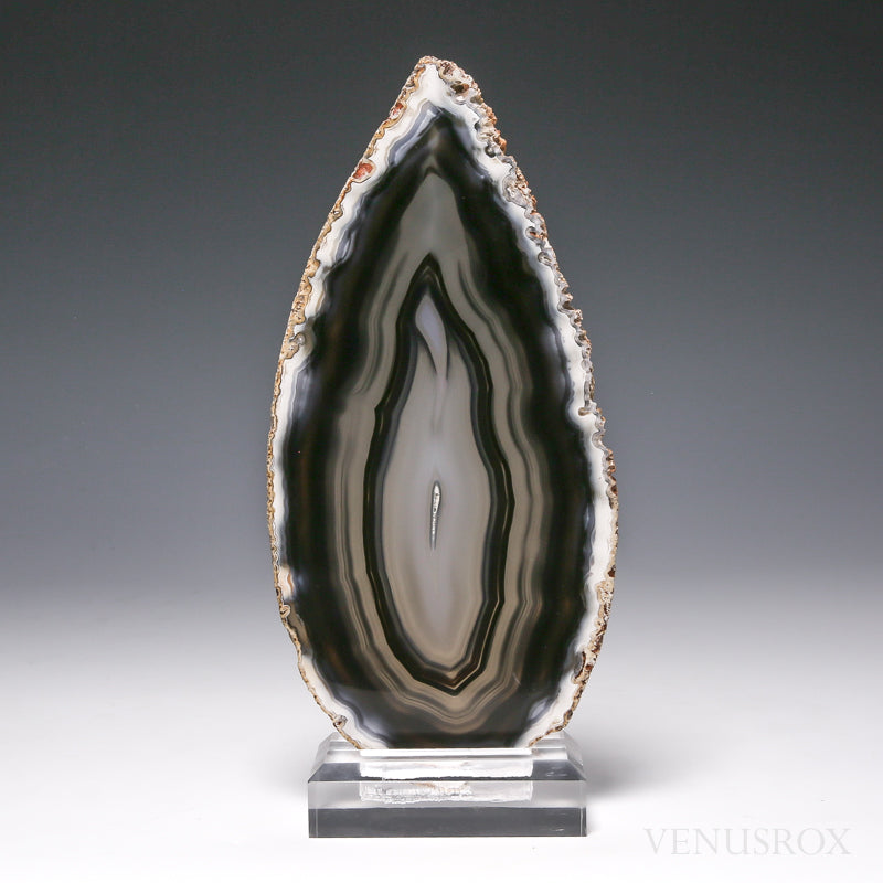 Agate Polished Slice from Brazil, mounted on a bespoke stand | Venusrox