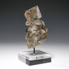 Smoky Herkimer 'Diamond' Quartz Natural Cluster from the Ace of Diamonds Mine, Herkimer County, New York State, USA, mounted on a bespoke stand | Venusrox