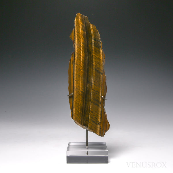 Tigers Eye with Hematite Part Polished/Part Natural Crystal from South Africa, mounted on a bespoke stand | Venusrox