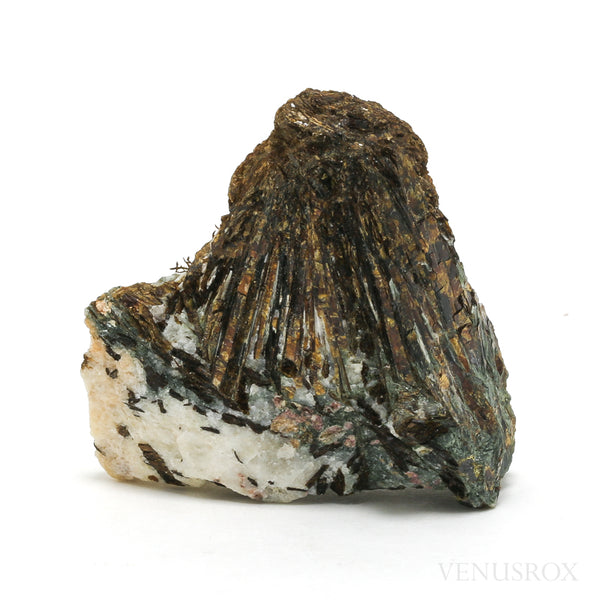 Astrophyllite Natural Crystal from Kola Peninsula, Russia | Venusrox