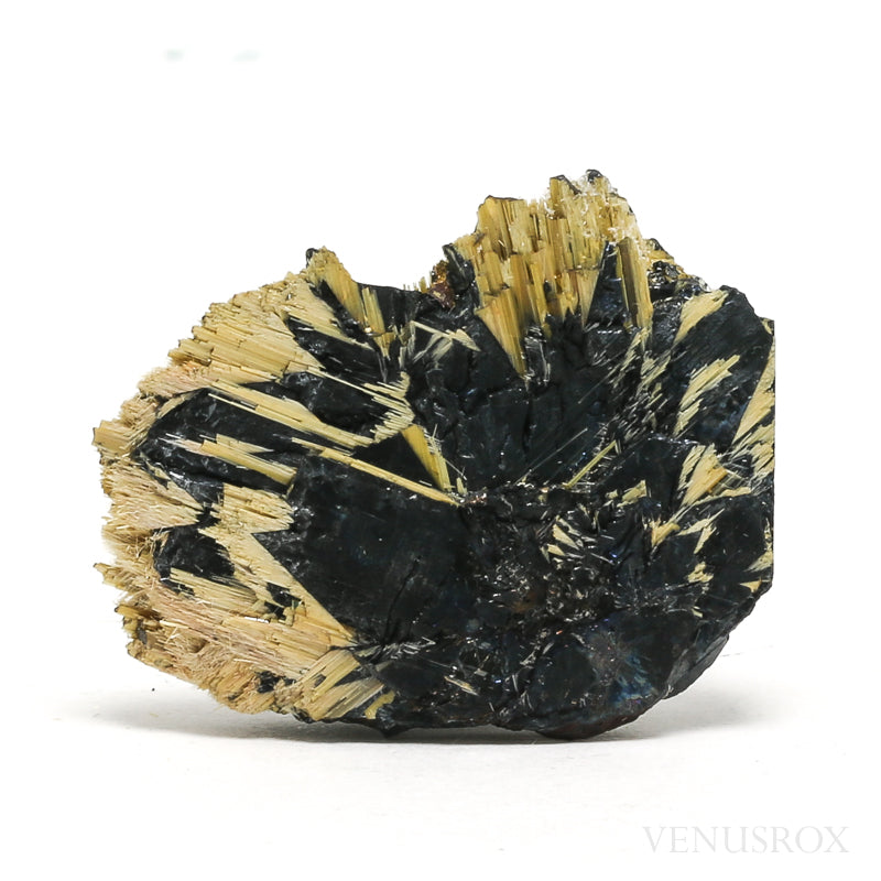 Hematite with Golden Rutile Natural Crystal from Novo Horizonte, Bahia, Brazil | Venusrox