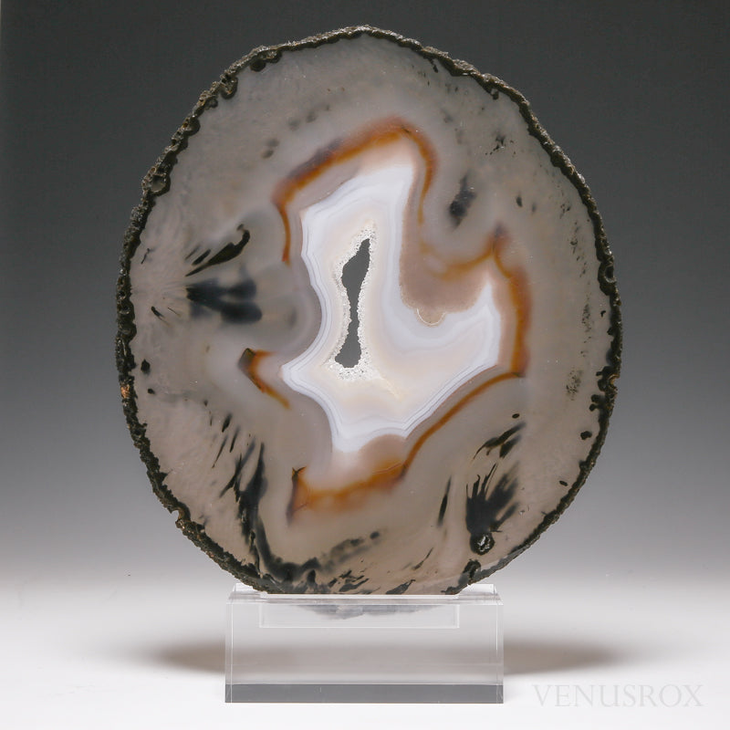 Agate with Quartz Polished Slice from Brazil mounted on a bespoke stand | Venusrox