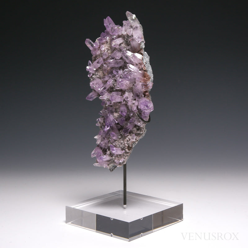 Amethyst Natural Cluster on Matrix from the Piedra Parada, near Las Vigas, Tatatila, Veracruz, Mexico mounted on a bespoke stand | Venusrox