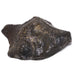 Meteorite (Gebel Kamil) Natural/Polished Fragment - Venusrox - 4