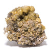 Quartz (Rutilated) Cluster - Venusrox - 1