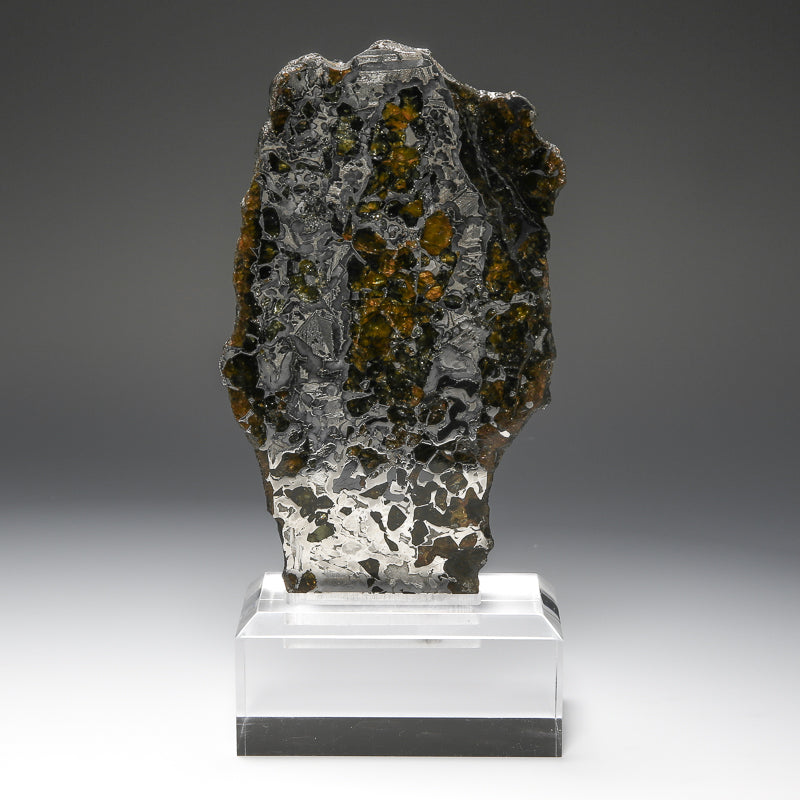 Seymchan Meteorite Slice with Bespoke Stand from Russia | Venusrox