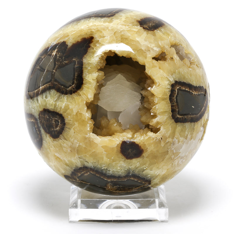 Septarian Sphere from Utah, USA | Venusrox