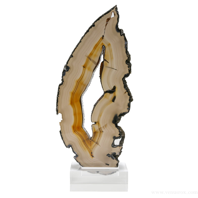 Agate Polished Slice from Brazil | Venusrox