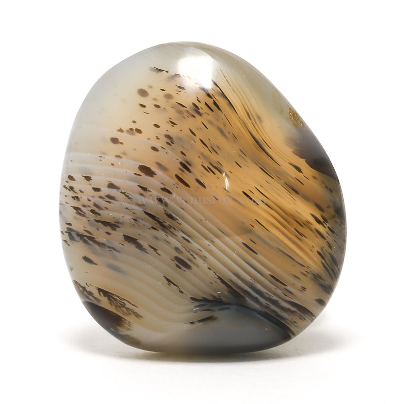 Dendritic Agate Polished Crystal from Madagascar | Venusrox