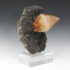 Stellar Beam Calcite on Sphalerite Natural Cluster from the Elmwood Mine, Tennessee, USA, mounted on a bespoke stand | Venusrox