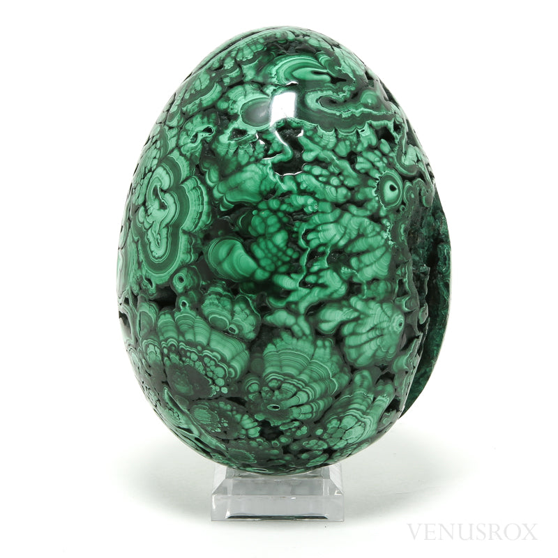 Malachite Part Polished/Part Natural Egg from the Democratic Republic of Congo | Venusrox