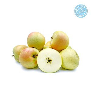 TOKI APPLE (JAPAN) - SO.Fruits | Singapore's Premium Fruits Delivery