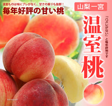 Load image into Gallery viewer, YAMANASHI HAKUHO MOMO PEACH (JAPAN) - SO.Fruits | Singapore's Premium Fruits Delivery