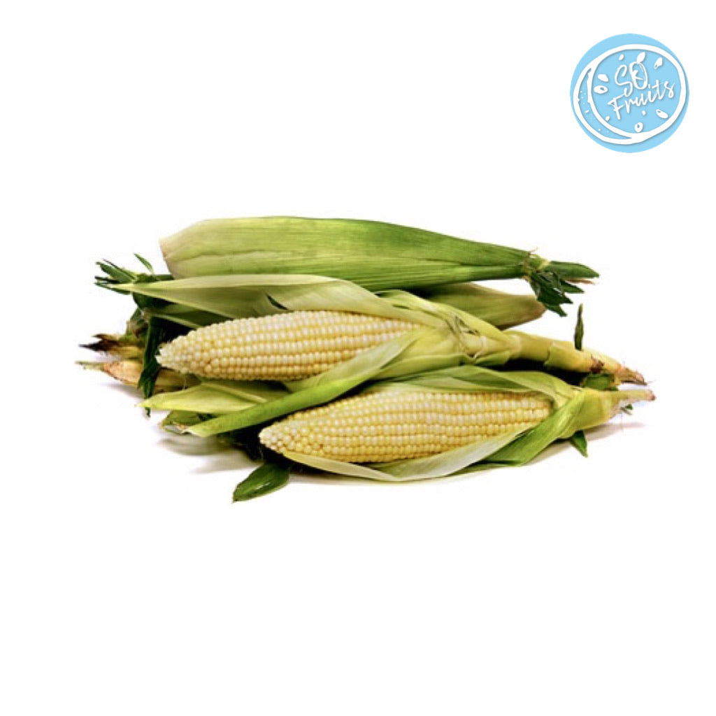 SWEET WHITE CORN (MALAYSIA) - SO.Fruits | Singapore's Premium Fruits Delivery