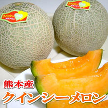 Load image into Gallery viewer, KOCHI RED FLESH MELON (JAPAN) - SO.Fruits | Singapore's Premium Fruits Delivery