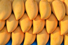 Load image into Gallery viewer, HONEY MANGO (CHINA) - SO.Fruits | Singapore's Premium Fruits Delivery