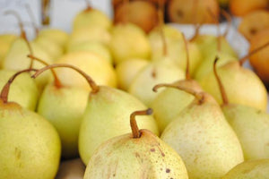 ASIAN PEAR (CHINA) - SO.Fruits | Singapore's Premium Fruits Delivery