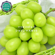 Load image into Gallery viewer, YAMANASHI SHINE MUSCAT GRAPES (JAPAN) - SOFruitsg | Singapore's Premier Fruit Delivery