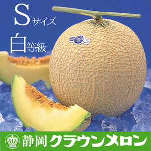 SHIZUOKA CROWN MUSKMELON (JAPAN) - SO.Fruits | Singapore's Premium Fruits Delivery