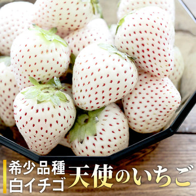 WHITE PEARL STRAWBERRY (JAPAN) - SOFruitsg | Singapore's Premier Fruit Delivery