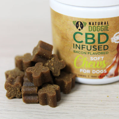 cbd infused bacon flavor soft chews chew close up