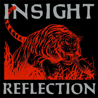"MTR001-1 Insight ""Reflection"" LP Album Artwork"