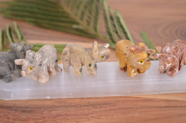 Triceratops Soapstone Steatite Carving for Broadening Horizons & Shamanic Guidance