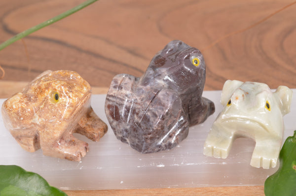 Frog Soapstone Steatite Carving for Broadening Horizons & Shamanic Guidance