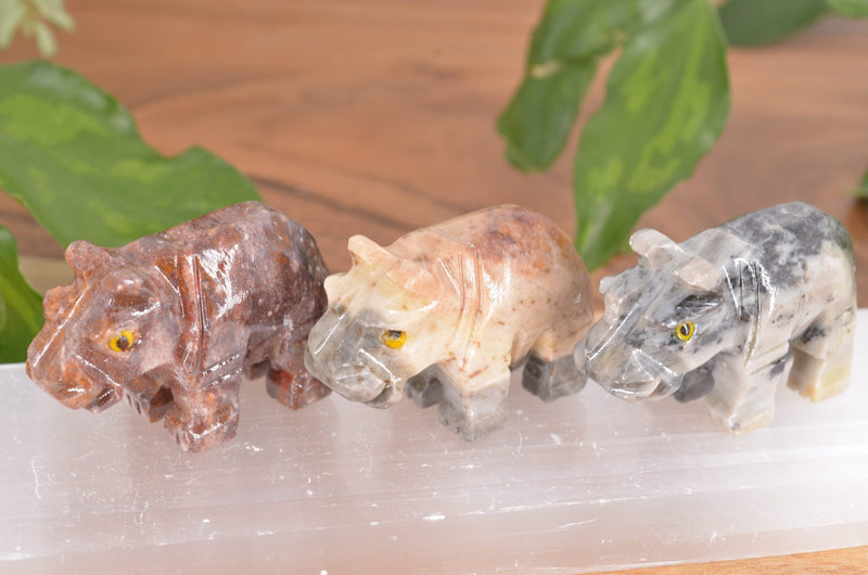 Hippo Soapstone Steatite Carving for Broadening Horizons & Shamanic Guidance