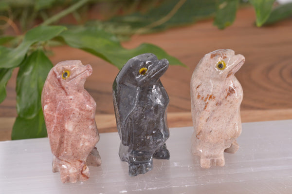 Penguin Soapstone Steatite Carving for Broadening Horizons & Shamanic Guidance