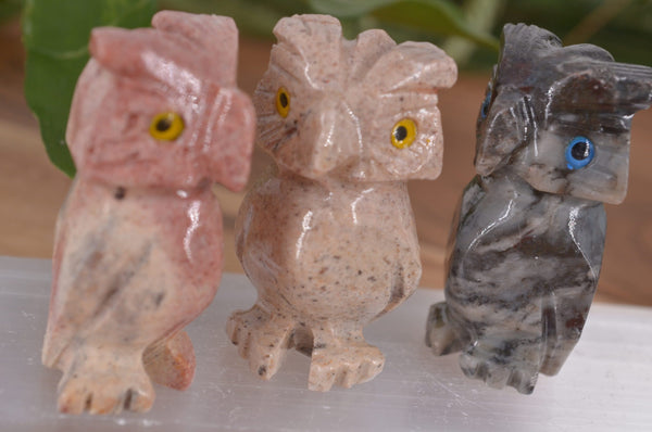 Owl (No Tail) Soapstone Steatite Carving for Broadening Horizons & Shamanic Guidance