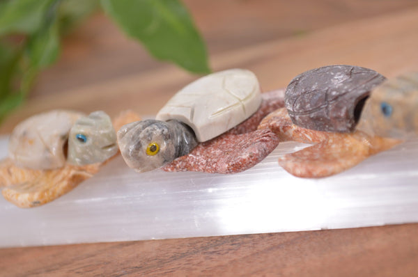 Sea Turtle Soapstone Steatite Carving for Broadening Horizons & Shamanic Guidance