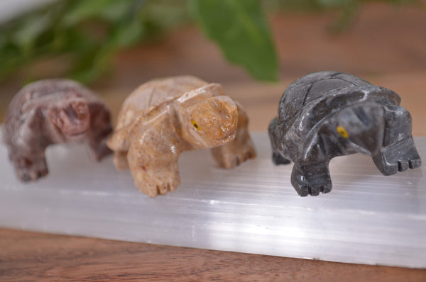 Turtle Soapstone Steatite Carving for Broadening Horizons & Shamanic Guidance