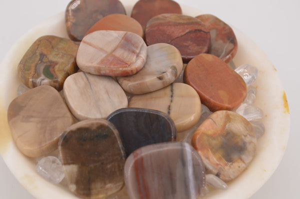 Petrified Wood Coins