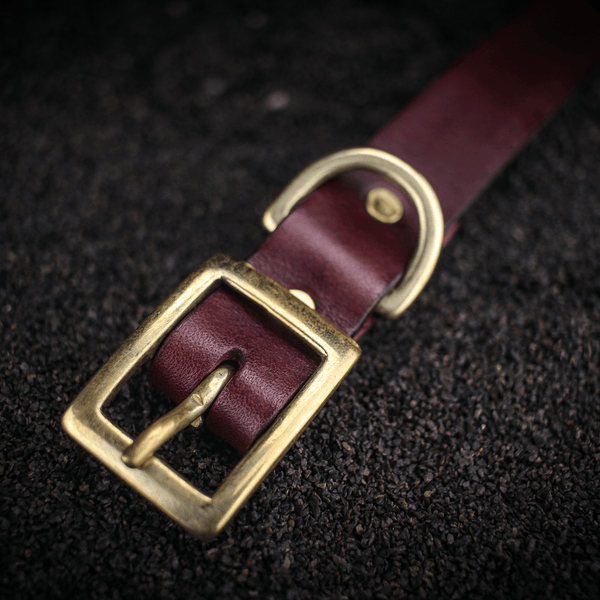 Traditional Dog Collar - Medium