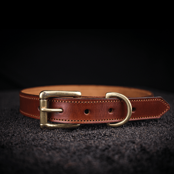 large traditional leather dog collar