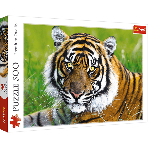 Tiger Puzzle - Trefl - 500 pieces - Puzzles-and-Games.com