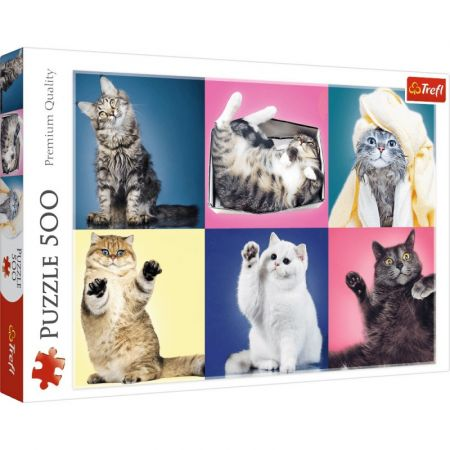 Kittens Puzzle - Trefl - 500 pieces - Puzzles-and-Games.com