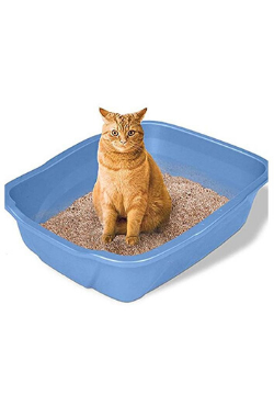 Emily Pets® Easy Clean Bentonite Cat Litter (Apple) - Tom and Pluto