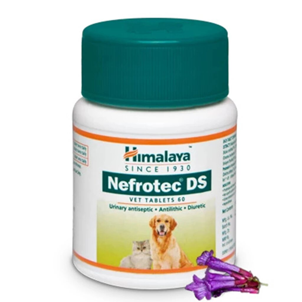 Himalaya Nefrotec DS Tablets - 60Tabs - Tom and Pluto
