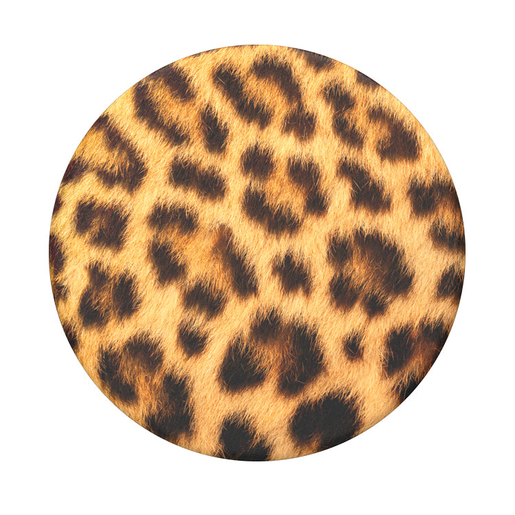 Cheetah Chic 獵豹 <泡泡帽>