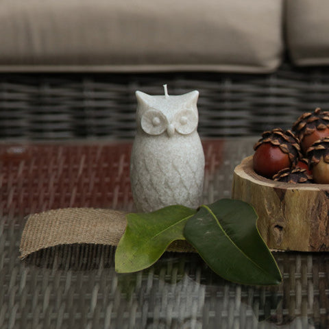 Charming Owl Candle