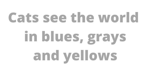 cats see the world in blues, grays and yellows quotation