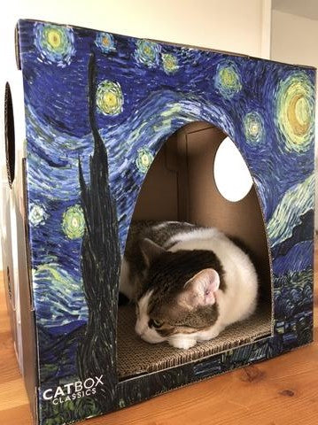 Cute Cleo asleep in the Furry Masterpieces Cat House with Scratcher