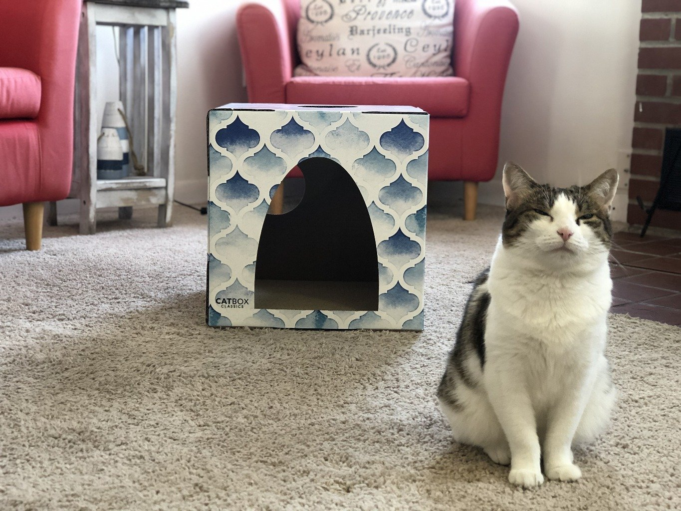 Purrfect Oasis Cat House with Scratcher - Cat Box Classics