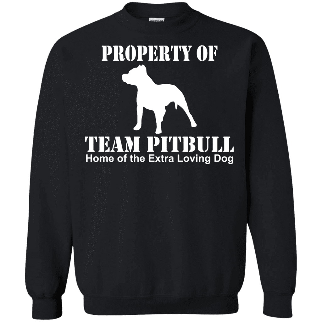 Property Of Team Pitbull Men Tee - STUDIO 11 COUTURE