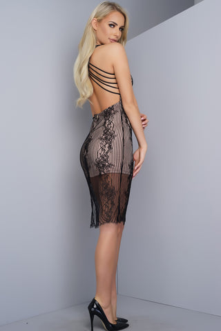 Sheba Lace Dress - Black - WantMyLook