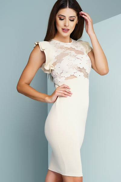 Briar Lace Pencil Dress - Nude - WantMyLook
